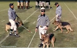 Referee Issues Is Something All Fans Can Come Together On